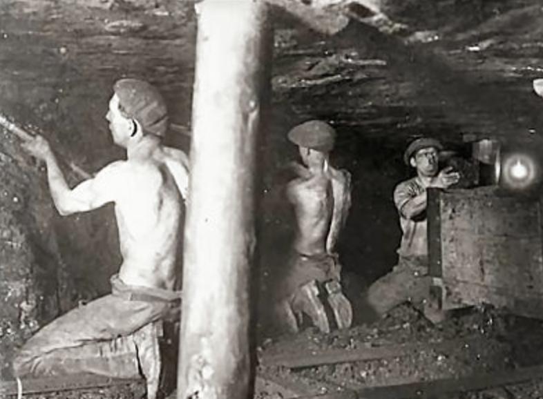 Fernie miners