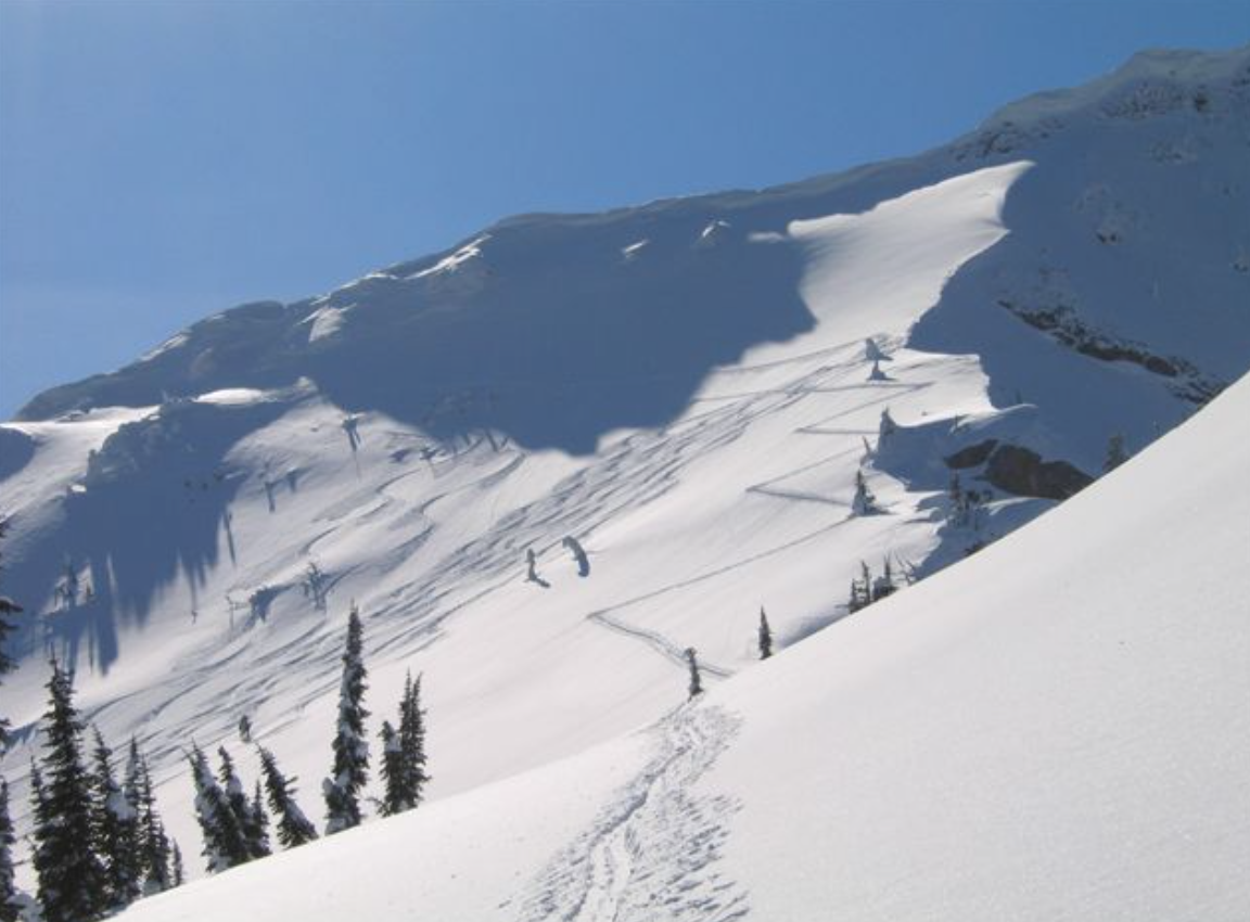 fernie backcountry
