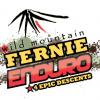 WMfernie-enduro-logo