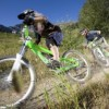 Fernie biking