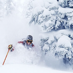 Fernie powder skiing