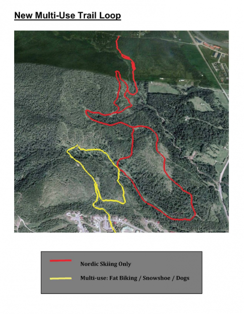Fernie snow biking trail