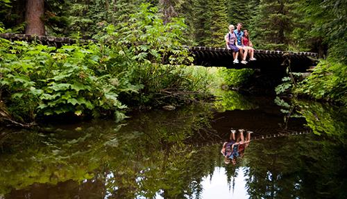 Mount Fernie Provincial Park Loop