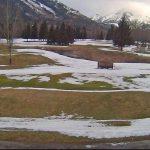 golf-fernie-webcam