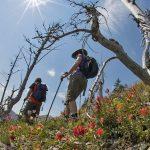 McPhee_Heikos Trail #DA9ADB