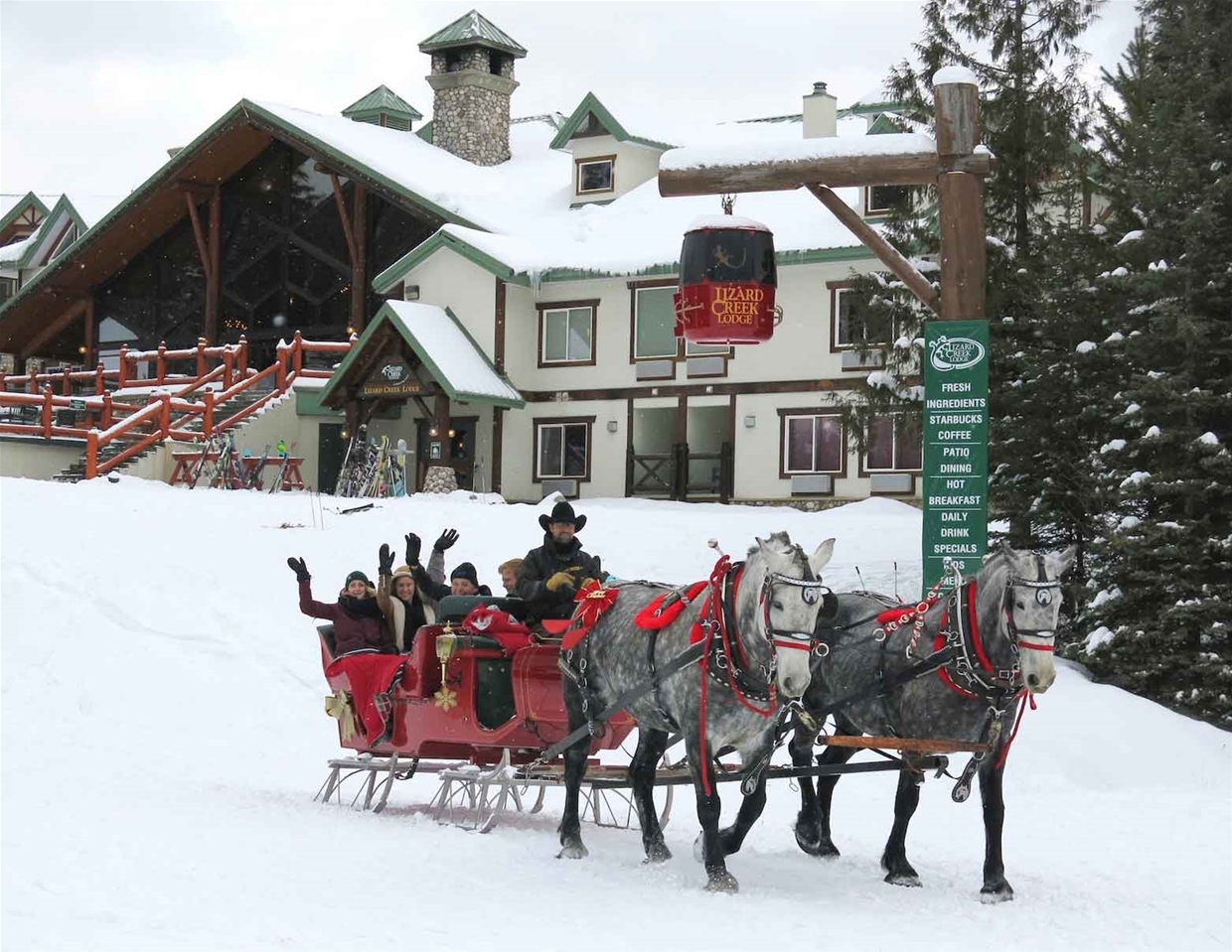 238 best Horse Sleighs & Carriage's images on Pinterest ... |Horse Drawn Sleigh Rides Christmas