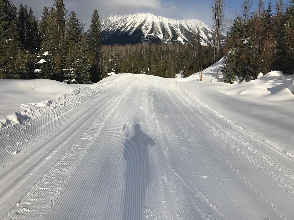 Fernie Nordic Trails
