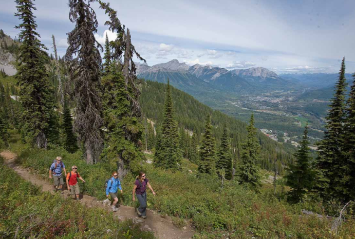 Guided hikes at Fernie Alpine Resort