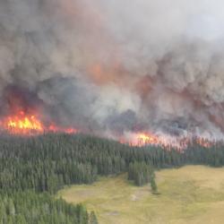 Elk Valley Evacuation and Health Alert: Updated