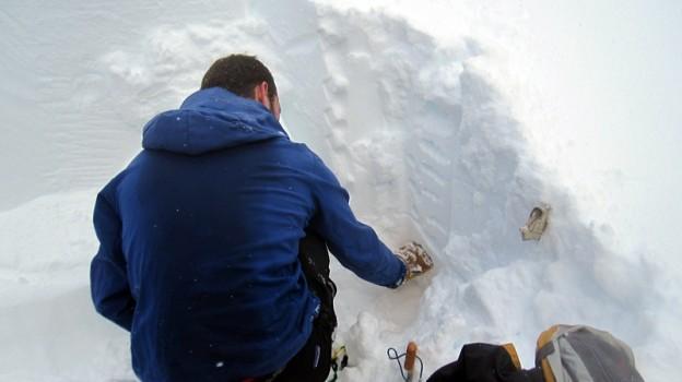 Fernie snow