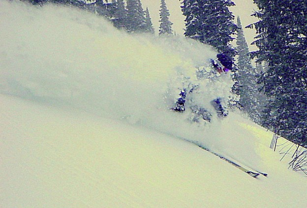fernie powder