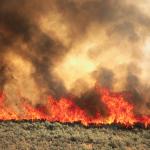 Aggressive Wildfire Prompts Evacuation Order