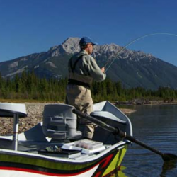 Fishing Experiencing Huge Jump