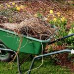 Fernie Spring Cleanup
