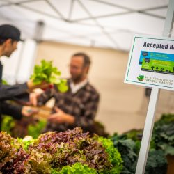 Farmers Market Nutrition Coupon Boosted