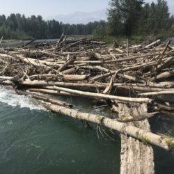 Hazard On Elk River