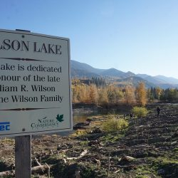 Students Turn Wilson Lake into Wetlands