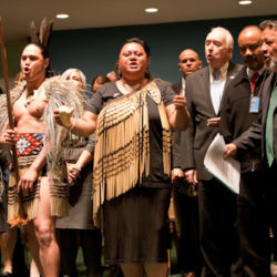 Declaration on the Rights of Indigenous People Act