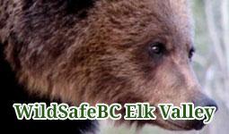WildSafeBC Elk Valley